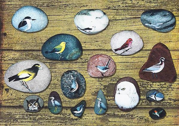 rock_birds
