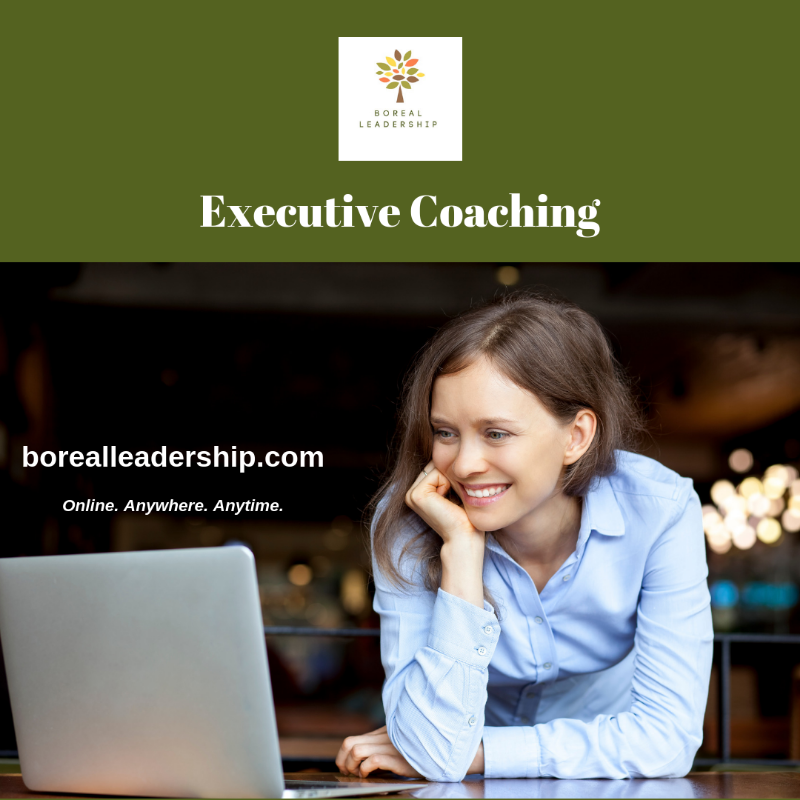OnlineExecutiveCoaching_online_anywhere_anytime_Boreal